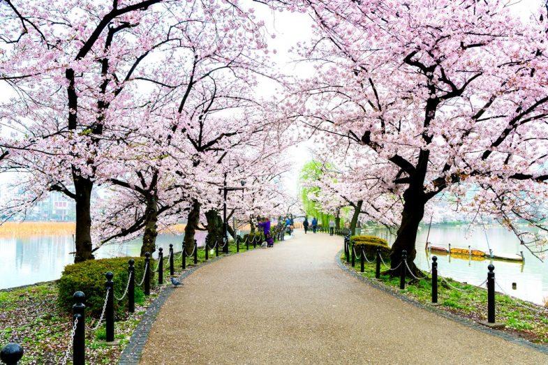 Où séjourner à Tokyo: Ueono